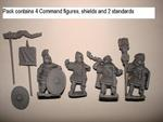 Legionary Command 2 (4 Figures)